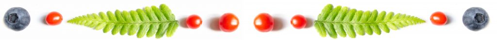 fougere-myrtille-tomate